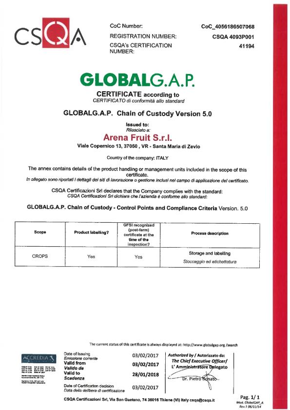 GLOBAL GAP ARENA 28.01.18