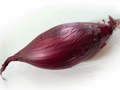 cipolla-rossa-tropea