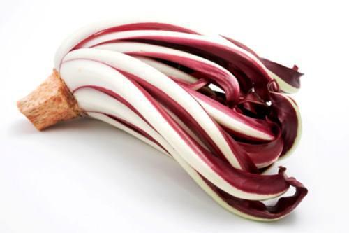 radicchio-rosso (1)